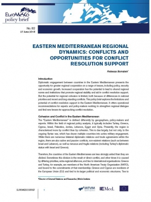 Euromesco Policy Brief 82
