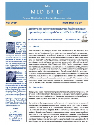 FEMISE MED BRIEF n°19 - Reforming Fossil fuel Subsidies: Challenges and Opportunities for Mediterranean countries