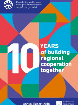 UfM annual report 2018 : 10 years of building regional cooperation together