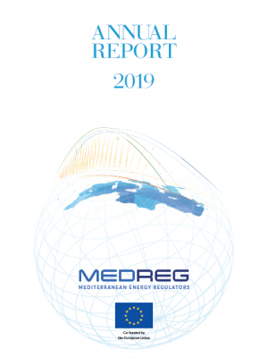 MEDREG Annual Report 2019