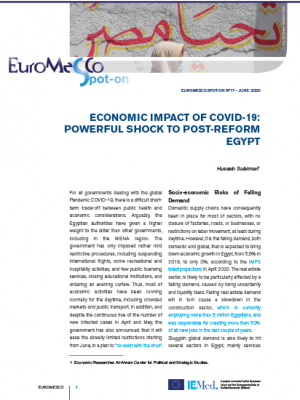 Euromesco Spot-On 17 – Economic impact of COVID-19: Powerful shock to post-reform Egypt
