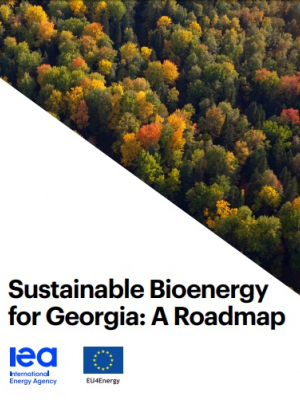 Sustainable Bioenergy for Georgia: A Roadmap