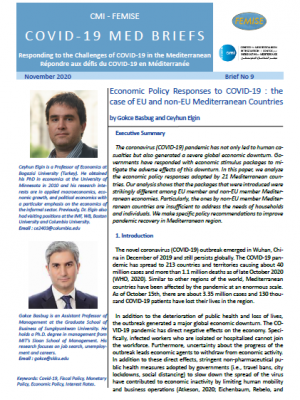 CMI FEMISE COVID-19 MED BRIEF 9 – Economic policy responses to COVID-19: the case of EU and non-EU Mediterranean countries