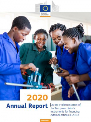 2020 Annual report on the implementation of the European Union's instruments for financing external actions in 2019