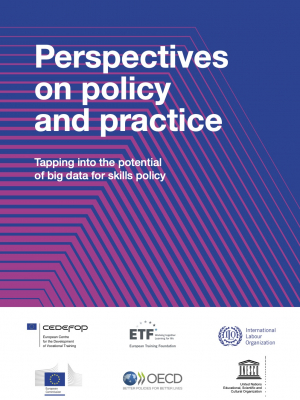 Perspectives on policy and practice. Tapping into the potential of big data for skills policy