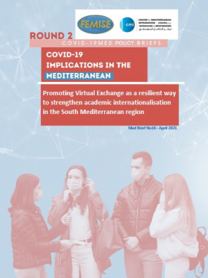 CMI FEMISE COVID-19 MED BRIEF 16 - Promoting Virtual Exchange as a resilient way to strengthen academic internationalisation in the South Med