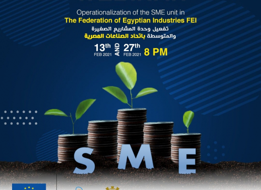 EU-funded webinar to train MSMEs on online business